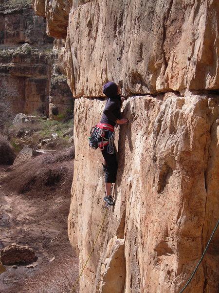 Rock Climbing Photo: Lauren onsighting Mental Block Party