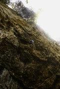 Rock Climbing Photo: moving through the knee bar