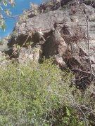 Rock Climbing Photo: Crux on Bear's Choice.