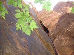 Rock Climbing Photo: Fett in the 1st ptch OW.
