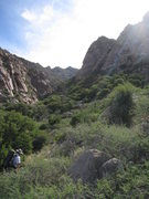 Rock Climbing Photo: Bruce on the hike in.  The Citadel is just right o...
