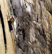 "Rock Climbing Photo: John ""Yabo"" Yablonski hanging out waitin..."
