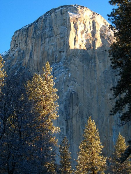 Rock Climbing Photo: El Cap on a cold May morning