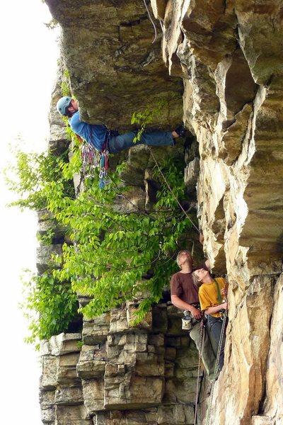 Pretty damn horizontal climbing for 5.6. May 2010.