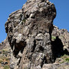 Predator Wall profile.<br> Photo by Blitzo.