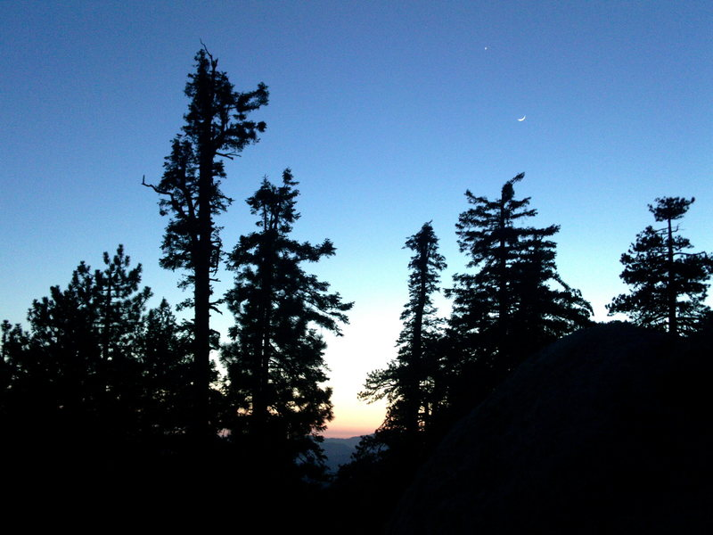 Sunset with Venus and a crescent moon through the Pines