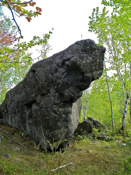 Beautiful boulder in the woods west along the bluffs.