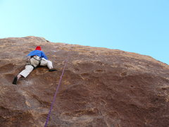 Rock Climbing Photo: Wendall Smith on the excellent face climb Manichea...