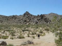 Rock Climbing Photo: Linn Rd.  Laffy Taffy.