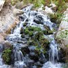 A fun backpacking trip to the ghost town of Panamint City. This is one of the larger waterfalls you have to hike through, or climb around when in Surprise Canyon.<br> <br> Taken 5/19/10