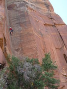 Rock Climbing Photo: Marshmallow jams!