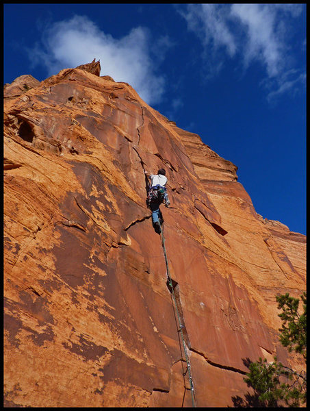 Rock Climbing Photo: David Bloom on Crimson King.