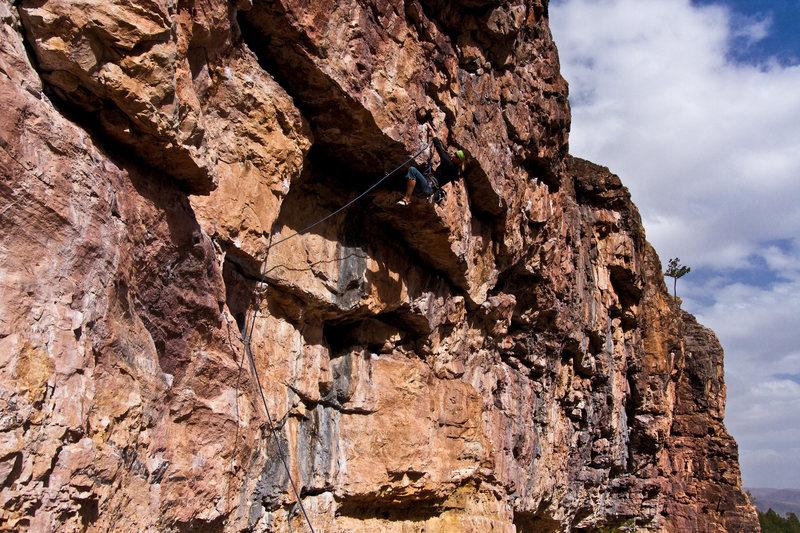 Rock Climbing Photo: Michelle sending.
