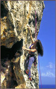 Rock Climbing Photo: Tressa Mallamo puzzling her way up 'No Problem Mon...