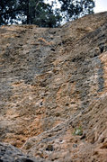 Rock Climbing Photo: The upper half of the route from below, 'Verdures ...