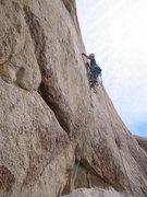Rock Climbing Photo: Turd Burgler