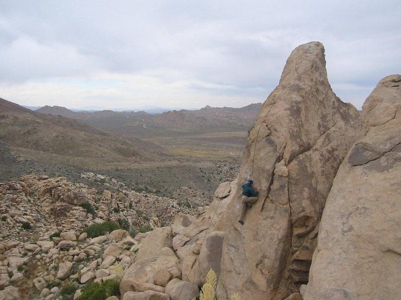 Rock Climbing Photo: Sharon Stone