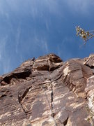 Rock Climbing Photo: Cat in the Hat. Fun climb.