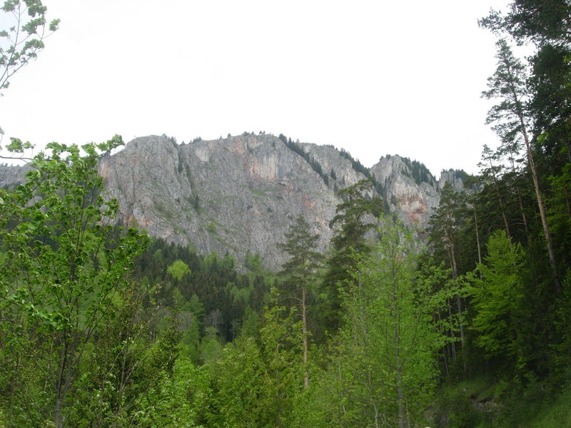 The view of Rote Wand from the dirt road leading to the hiking trail leading up to the cliff.