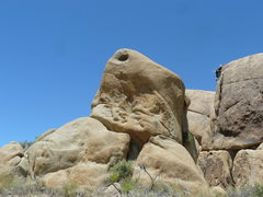 Rock Climbing Photo: Eine Dicke Frau.