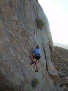 Rock Climbing Photo: Rhesa Ashbacher hand-jammin on Hot-N-Ready.