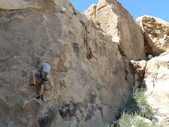 Rock Climbing Photo: Bort