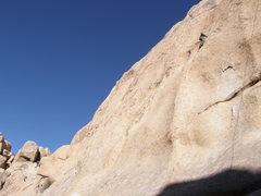 Rock Climbing Photo: Tony Carbonie, 5.10b