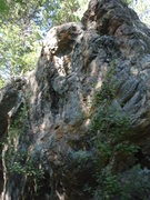 Rock Climbing Photo: The line (albeit blurry).  Will replace with a bet...