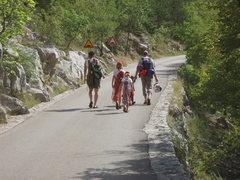 Rock Climbing Photo: Crag family on the mellow approach