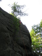 Rock Climbing Photo: Me at the anchors. photo by Lincoln
