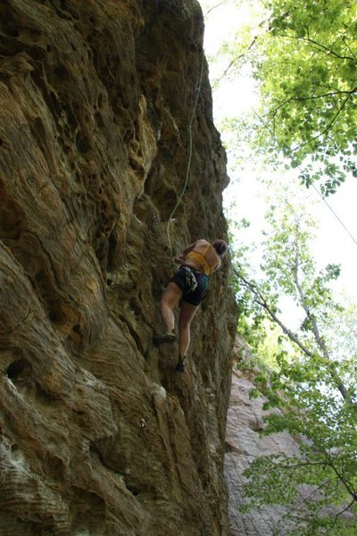 Rock Climbing Photo: Red River Gorge, May 2010