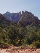 Rock Climbing Photo: Damfino