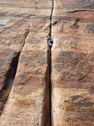 Rock Climbing Photo: Generic Crack, Indian Creek