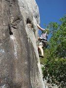 Rock Climbing Photo: june 5 leapin' lizards