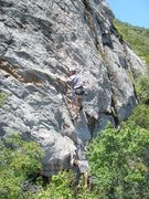 Rock Climbing Photo: june 5 sunnyside