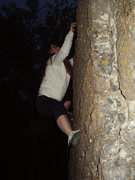 Rock Climbing Photo: Effie bouldering at 385.
