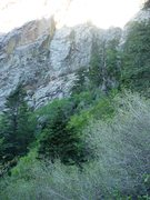 Rock Climbing Photo: Photo taken from skier's left side of canyon, 30 y...