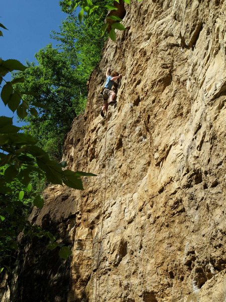Rock Climbing Photo: Bob Kryzer cruxing of Freehander. 6 June '10.