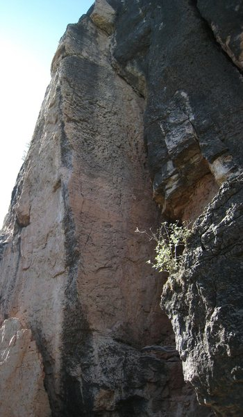 "The impressive arete of ""Nyorgai"".  Looks much better than it climbs...."