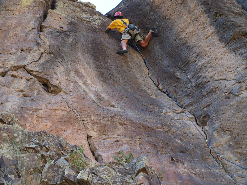 Rock Climbing Photo: Tigger ran onto a bat in the crack on this send of...