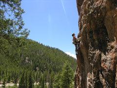 Rock Climbing Photo: Shane Niedert up Taylor Canyon.