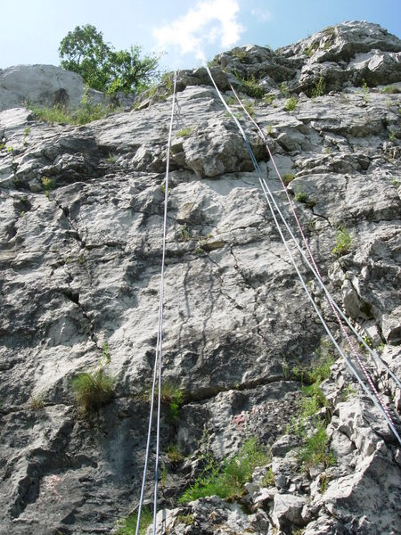 Diótörő at Bajót.  If you look closely, you'll see the pin at the start of the route and also the next clip, which is an eyebolt type glue in below the bulge.  Follow that line and then clear the bulge on the left hand side.  Scramble to the top.