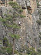 Rock Climbing Photo: TR Canyon