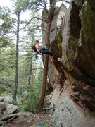 """Rapelling from the tree.  The """"spike"""" on the downclimb is in the foreground."""
