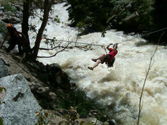 Rock Climbing Photo: Cob rock tyrolean traverse, Boulder Creek was angr...