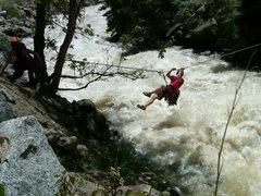 Rock Climbing Photo: Cob rock tyrolean traverse, Boulder Creek was angr...