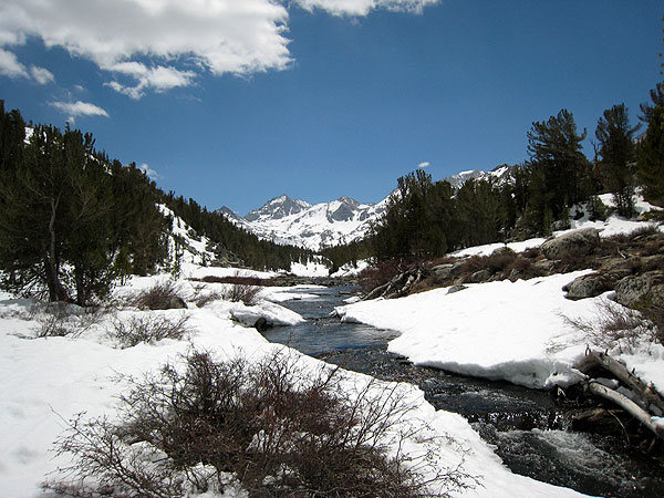 spring in Little Lakes Valley