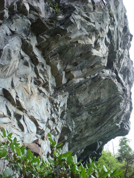 Rock Climbing Photo: The left bolt line is Mark of the Beast.  Cerberus...