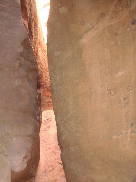 Rock Climbing Photo: Nice lighting.