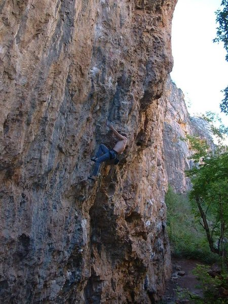 Rock Climbing Photo: in Your Face, Rifle
